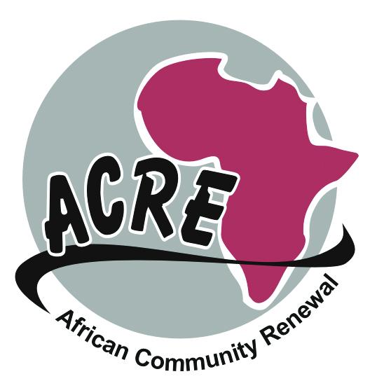 African Institute for Philanthropy and Community Renewal at Global Diaspora Week 2015